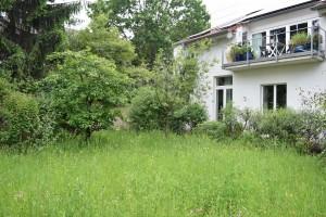 Naturgarten - Bild 9