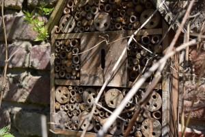 Insektenhaus mit Mauerbienen #1