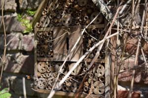 Insektenhaus mit Mauerbienen #2