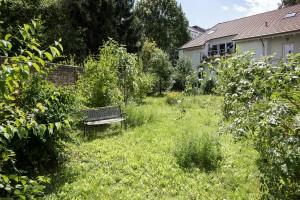 Naturgarten - Bild 3
